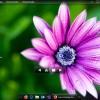 ccdesk.jpg
