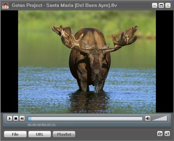 FLV Player - проигрыватель для FLV файлов (Flash video). Позволяет