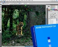 Adobe Photoshop CC 2018 19.1.0