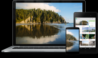 Google Drive - Backup și sincronizare 3.47