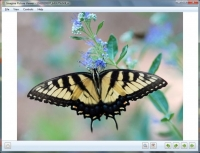 Imagine Picture Viewer 2.2.3