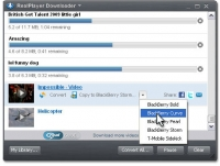 RealPlayer 15.0.0.198
