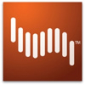Adobe Shockwave Player 12.2.8.198