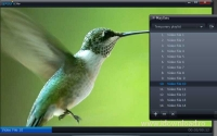 Splash Lite - HD Video Player 2.1.0