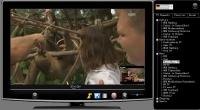 SteelSoft TV 2.87