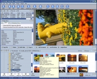 DIMIN Image Viewer 5