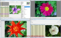 WildBit Viewer 6.4 Alpha 1.0