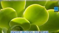 Mac Dock 6.0