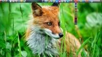 Xpeon-Bar 2.1.3